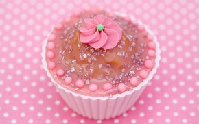 Wallpaper delicate, decoration, pink, pink, baby, cupcake, sweet, cream, cupcake