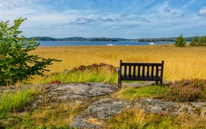 Picture sea, summer, bench, Nature, summer, sea, nature