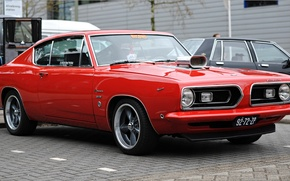 Picture Muscle, Barracuda, Plymouth, 1968, Plymouth, Barracuda