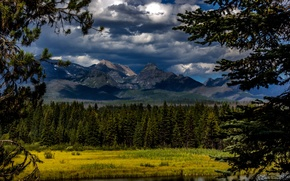 Picture forest, clouds, trees, mountains, river, Canada, Glacier National Park, Montana