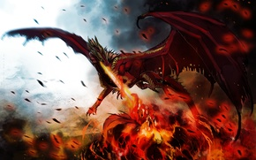 Picture fire, flame, dragon, wings, monster, art, dragon, hellfyre