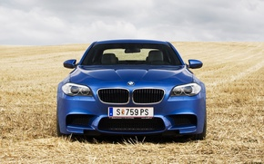 Picture field, blue, BMW, the front