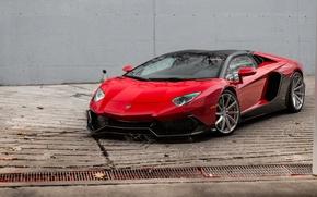 Picture Roadster, Lamborghini, Red, Aventador, Anniversary, 50th