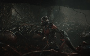 Picture Red, Hero, Bullets, Men, Wallpaper, Eyes, Super, Boy, Army, Rider, Year, EXCLUSIVE, MARVEL, Weapons, Walt …