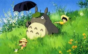 Picture Totoro, My neighbor Totoro, Tototo, My neighbor totoro