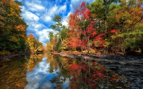 Picture autumn, forest, the sky, water, clouds, trees, landscape, lake, reflection
