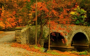 Picture road, autumn, forest, leaves, trees, bridge, nature, Park, colors, colorful, forest, road, trees, nature, bridge, …