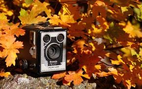 Picture autumn, background, camera