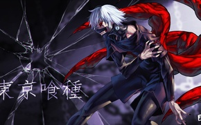 Picture fragments, blood, mask, claws, guy, art, ghoul, tokyo ghoul, Ken kanek, jjune