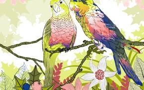 Wallpaper flowers, parrots, vector, twigs, nature