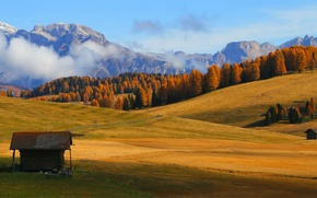 Picture autumn, forest, trees, landscape, mountains, fog, field, Alps, houses, meadows, Wallpaper from lolita777