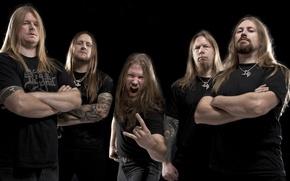 Picture group, metal, metal, Viking, death, viking, melodic, amon amarth, melodic