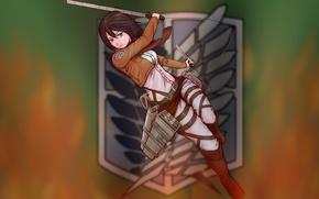 Picture look, girl, weapons, attitude, gesture, swords, art, cables, banner, shingeki no kyojin, mikasa ackerman, Kato …