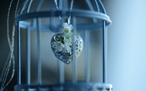 Picture flowers, cell, pendant, heart