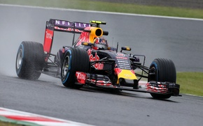 Picture Formula 1, Red Bull, The front, Kvyat, Kvyat, Damp