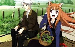 Picture joy, field, wagon, two, basket, ears, spice and wolf, horo, spice and wolf, kraft lawrence, …