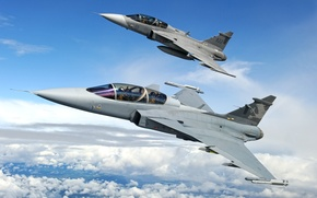 Picture fighter, You can, JAS 39, Gripen