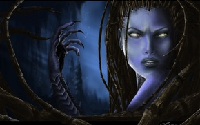 Picture starcraft, zerg, Blizzard, Zerg, blizzard, StarCraft, Sarah Kerrigan, sarah kerrigan, queen of blades, the Queen …