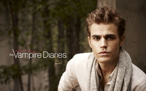 Picture the series, 2010, The vampire diaries, Stefan Salvatore