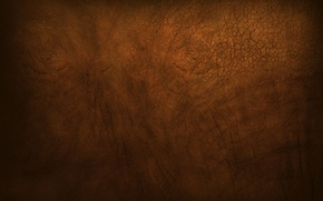 Picture brown, muddy, gutsy, Elephant skin, rough, dusty