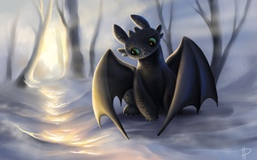 Picture look, the sun, snow, dragon, the game, art, how to train your dragon, the night …