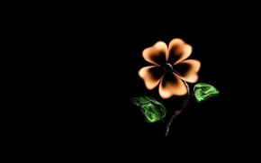 Picture flower, creative, fire, minimalism, match, black background