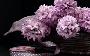 Picture basket, braid, hyacinths