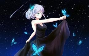 Picture the sky, girl, stars, butterfly, night, anime, art, caeruleus