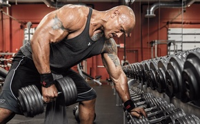 Picture machine, Dwayne Johnson, the rock, workout, gym