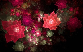 Picture light, flowers, collage, Wallpaper, partial shade