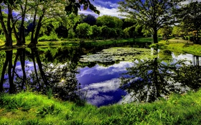 Picture the sky, grass, clouds, trees, pond, Nature