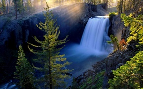 Picture forest, trees, branches, river, stones, dawn, waterfall, moss, stream, the sun's rays, rock. canyon