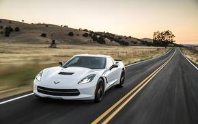 Picture Corvette, Chevrolet, Stingray, 2014