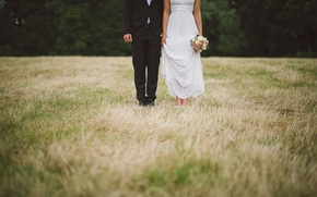 Picture field, grass, dress, costume, the bride, the groom