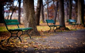 Picture autumn, leaves, trees, Park, alley, bench