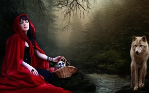 Picture forest, nature, wolf, Little red riding hood
