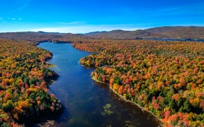 Wallpaper landscape, Higgins Bay, trees, the state of new York, autumn, the sky, river, forest, USA