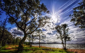 Wallpaper FOREST, HILLS, GRASS, HORIZON, The SKY, The SUN, CLOUDS, POND, LIGHT, SHORE, TREES, RAYS, DAL, ...
