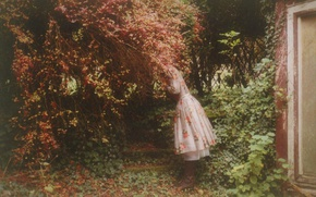 Picture autumn, girl, nature, dello, by sowild