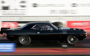 Picture speed, race, car, muscle car