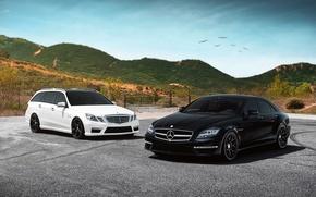 Wallpaper white, black, tuning, Mercedes, Mercedes-Benz AMG E63, AMG CLS63