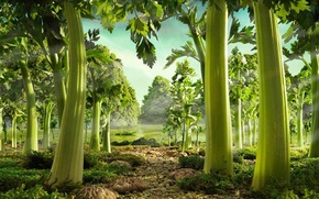 Picture greens, grass, trees, river, boat, kratina, Carl warner