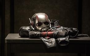 Picture costume, helmet, Marvel, Ant-man, Ant-man