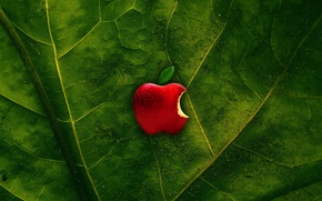 Picture green, apple