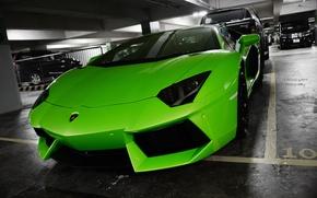 Picture car, green, green, Lamborghini, LP700-4, Aventador, Lamborghini, aventador