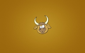 Wallpaper head, animal, minimalism, orange background, bull, face, bull, horns