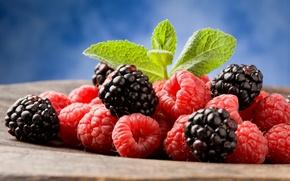 Picture berries, raspberry, leaves, BlackBerry, blackberry, raspberry