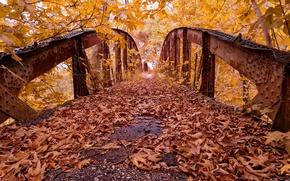 Picture autumn, leaves, bridge, Park