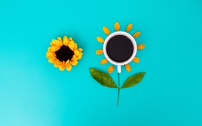 Picture flower, leaves, macro, Cup, the view from the top