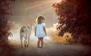 Wallpaper girl, road, dog